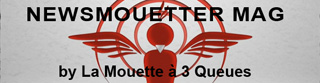 NEWSMOUETTER MAG by La Mouette à 3 Queues